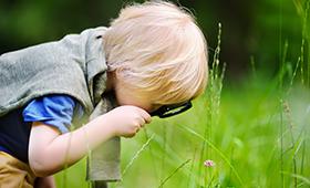 Ein Junge betrachtet eine Blume auf einer Wiese durch eine Lupe.