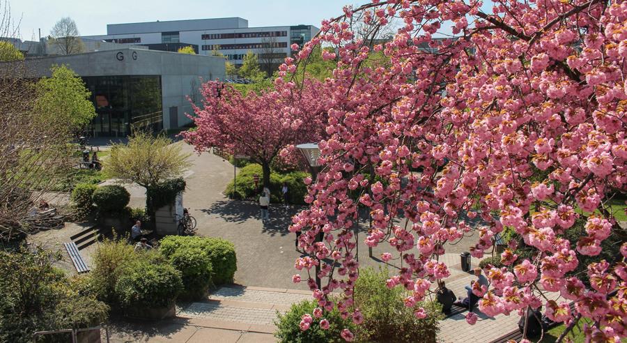 NRW-Technikum startet an der Uni Paderborn